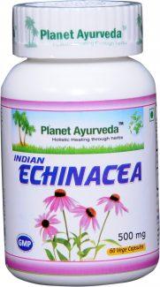 echinacea-capsules