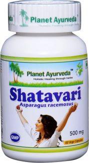 Shatavari PA 4 MB